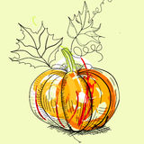 Pumpkin. Universal template for greeting card, web page, background Royalty Free Stock Photography