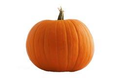 Pumpkin. Stock Photos