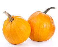 Pumpkin. Isolated on white background royalty free stock photos