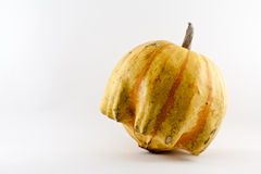 Pumpkin. An isolated yellow pumpkin in a white background Stock Images