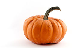 Pumpkin. An isolated orange pumpkin in a white background Stock Images