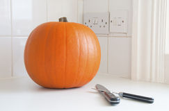 A pumpkin Royalty Free Stock Images