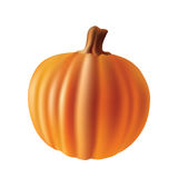 Pumpkin. Royalty Free Stock Photos