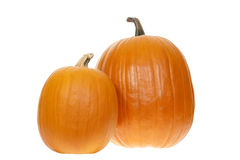 Pumpkin. Little and big pumpkin  on white background Stock Photography