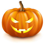 Pumpkin. On White Background, Vector Illustration Stock Photos