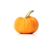 Pumpkin. Isolate on white background Stock Photo