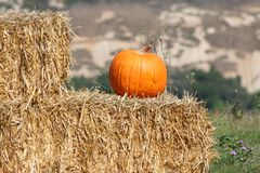 Pumpkin. Fall Pumpkin on hay bales Stock Images