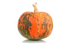 Pumpkin. Mature fruit on a white background Stock Photos