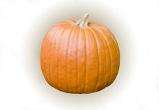 Pumpkin 3D Stock Image