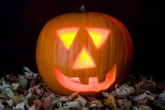 Pumpkin. Big ornage Pumpkin on black background Stock Photo