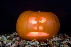 Pumpkin. Big ornage Pumpkin on black background Royalty Free Stock Photography
