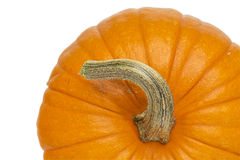 Pumpkin abstract background Stock Images