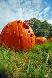 Pumpkin against sky Stock Images