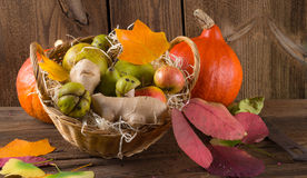 Pumpkin apfel basket Stock Photography