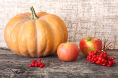 Pumpkin, apple, guelder-rose Stock Photo