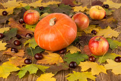 Pumpkin, appleas and chestnuts Royalty Free Stock Image