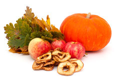 Pumpkin, apples and autumn leaves Stock Images