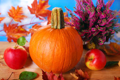 Pumpkin and apples on autumn table Stock Images