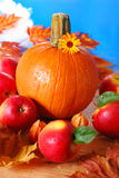 Pumpkin and apples on autumn table Royalty Free Stock Photos