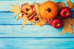Pumpkin, Apples and spices Royalty Free Stock Images
