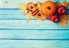 Pumpkin, Apples and spices Stock Photography