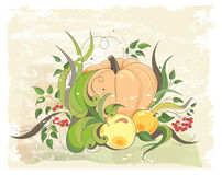Pumpkin, apples and sprigs of rowan Royalty Free Stock Photos