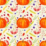 Pumpkin arrangement seamless pattern, autumn harvest watercolor. Pumpkin arrangement seamless pattern, fall harvest watercolor Thanksgiving  wallpaper with Stock Photography