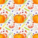 Pumpkin arrangement seamless pattern, fall harvest watercolor. Thanksgiving  wallpaper with pumpkins, berries, flowers and leaves on the polka dot background Stock Image