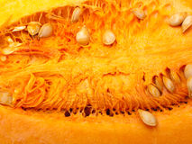 Pumpkin as background Stock Images
