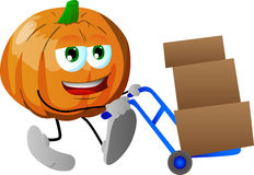 Pumpkin as delivery man Stock Photography