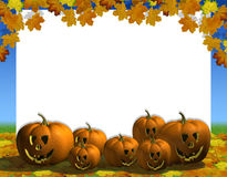 Pumpkin automn blank Royalty Free Stock Photo