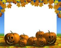 Pumpkin automn blank Royalty Free Stock Photo
