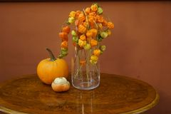 Pumpkin. Autumn decoration with pumpkin commemorates Halloween as appropriate as a cover or background Stock Image