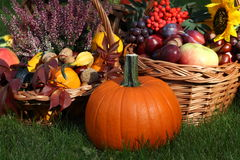Pumpkin with autumn goodies Royalty Free Stock Image
