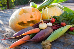 Pumpkin and autumn harvest Royalty Free Stock Images