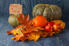 Pumpkin with Autumn Leaf Royalty Free Stock Photography