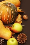 Pumpkin with autumn leaf, pinecone, apples on a dark wooden background. vertical image. Stock Images