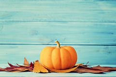 Pumpkin and autumn leafs Royalty Free Stock Image
