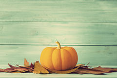 Pumpkin and autumn leafs Stock Photography