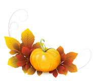 Pumpkin and autumn leaves Royalty Free Stock Photos