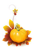 Pumpkin and autumn leaves Stock Photos