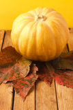 Pumpkin and autumn leaves Stock Images