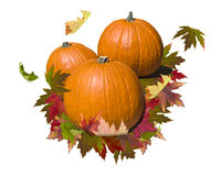 Pumpkin with autumn leaves Royalty Free Stock Image