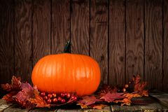 Pumpkin and autumn leaves against grunge wood. Pumpkin and autumn leaves against a grunge dark wood background Royalty Free Stock Photos