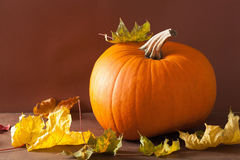 Pumpkin and autumn leaves for halloween Stock Photos