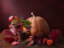 Pumpkin, autumn leaves and physalis Royalty Free Stock Photography