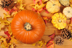 Pumpkin with autumn leaves Stock Image