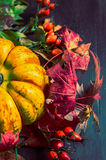 Pumpkin on autumn leaves and rose hips , close up Royalty Free Stock Photo