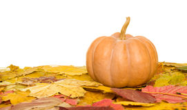 Pumpkin and autumn leaves on white Royalty Free Stock Photography