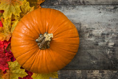 Pumpkin and autumn leaves. On wooden table stock images